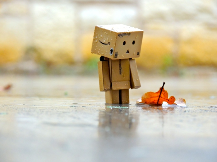 Danbo in the Rain